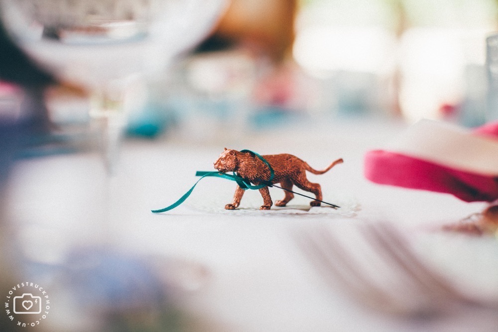 boho wedding, whimsical barn wedding, cripps barn wedding, wedding dinosaurs